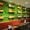 바를 위한 Handmade 주문을 받아서 만들어진 회양목 녹색 식물 벽