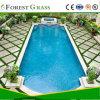 뒤뜰 수영장의 주위에 필드 녹색 20mm 우수한 정원사 노릇을 하는 인공적인 잔디,