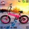 Motorino piegante elettrico grasso della bici 20inch della sporcizia di alta qualità della gomma