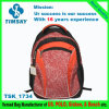 Haltbares Bag Backpack für Traveling, Hiking, Promotion, Sports, Laptop, School