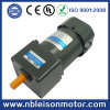Singolo CA Induction Gear Motor di Phase 60W