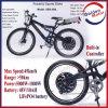 10ah LiFePO4 Battery를 가진 Ebike 48V 1000W Electric Bike