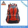 S'élever de montagne campant augmentant le sac à dos extérieur de course de sport de sac