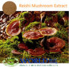Фабрика Supply Hot Selling Natural 100% Ganoderma Lucidum Extract Powder 10%-80%Polysaccharide Reishi Extract