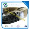 Fil de fer recuit par fil noir avec le prix de haute qualité et meilleur (usine réelle)