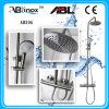Unità della toletta dell'acquazzone dell'acciaio inossidabile, acquazzone della stanza da bagno (AB206)