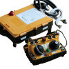 Contrôleur sans fil multicanaux 24V émetteur récepteur F24-60