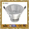 Het nieuwe Decoratieve LEIDENE van de Manier Licht van het Plafond met Certificatie CE&RoHS