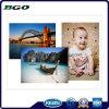 """Toile Tissu Toile en coton Impression numérique (20 """"X30"""" 3,8 cm)"""