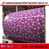 PPGI/ PPGL Couleur d'acier galvanisé recouvert de feuille bobines PPGI