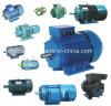 Всеобщий мотор/мотор мельницы/мотор Blender/мотор обработчика еды