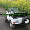 Кита 1200W взрослый электрическое ATV/Electric UTV