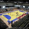 Профессиональный PVC Tile Floor Cheap для крытого/Outdoor Handball Club