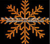 Vendita calda! LED Rope Light Motif/LED Snowflake per Holiday con CE RoHS
