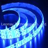 Kit azul impermeable flexible de IP65 DC12V 5630SMD LED