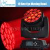 19X15W RGBW СИД Small Moving Head Light