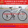 Tianjin Gainer 26  MTB/Mountain Bicycle Aluminum 21s