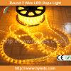 2개의 철사 둥근 LED 밧줄 빛
