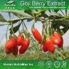 Выдержка ягоды 100% естественная Goji (полисахариды 10%~60%, 5:1, 10:1, 20: 1)