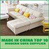 Strato nordico beige del sofà del salone di stile del cuoio genuino