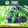 Kingeta riduce il fertilizzante composto basato carbonio NPK 18-18-6 di diffusione di malattia