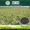 Il carbonio di fertilità di aumento di Kingeta ha basato il fertilizzante composto NPK 18-18-6