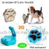 3G/WCDMA Waterproof o perseguidor portátil do GPS do mini animal de estimação com Geo-Cerca V40