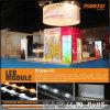Publicidad de la caja ligera modular del LED