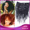 Brasiliano Virgin Hair Afro Kinky Clip di 100% in Hair Extension