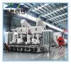 Fornecedor chinês a linha de produção de pelotas de resíduos florestais com Marcação ce&ISO