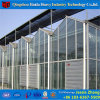 屋内野菜栽培アルミニウムフレームガラスの温室