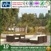 Rota polivinílica del balcón de los muebles del patio/sofá de mimbre (TG-JW17)