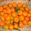 Mandarino del bambino