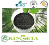 Nuovo fertilizzante caldo da Agriculture Fertilizer Company in Cina