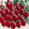Valentine (AF-R)를 위한 Home Wedding Decor Gifts를 위한 인공적인 Faux 로즈