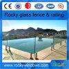 Mini rete fissa rocciosa di vetro di Frameless della piscina dell'alberino