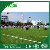 小型サッカー裁判所のためのフットボールの総合的な草
