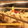 آليّة دواجن [برويلر شكن] يغذّي نظامة لأنّ مزرعة