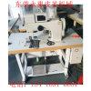 De geautomatiseerde Enige/Dubbele Naaimachine van het Patroon van de Naald Dikke Materiële