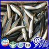 De uitstekende kwaliteit Bevroren Vissen van het Ijs van de Makreel van Zeevruchten Vreedzame
