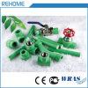 최신 판매 1.6MPa 32mm 녹색 PPR 물 공급 관