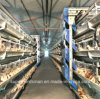 BroilerおよびLayersのための自動Poultry Cage Farm
