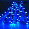 Luz flexible de la Navidad LED de la decoración de DC12V