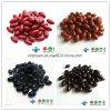 ODM/OEM GMP hochwertiges weiches Mineralgel-gesundes Produkt