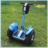 Xinli Ecorider 스쿠터, Segwaying 2 바퀴 각자 균형 전기 스쿠터