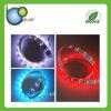 방수 편평한 유연한 RGB LED 빛 지구