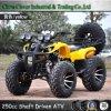 250cc ATV Farm Quad Bicicleta 250cc eje de la unidad ATV UTV Bike