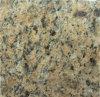 Giallo Veneziano Granit