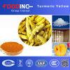 Natürliche wasserlösliche Gelbwurz des Nahrungsmittelpigment-95%