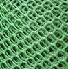 중국 직업적인 제조자 고품질 플라스틱 보통 그물세공